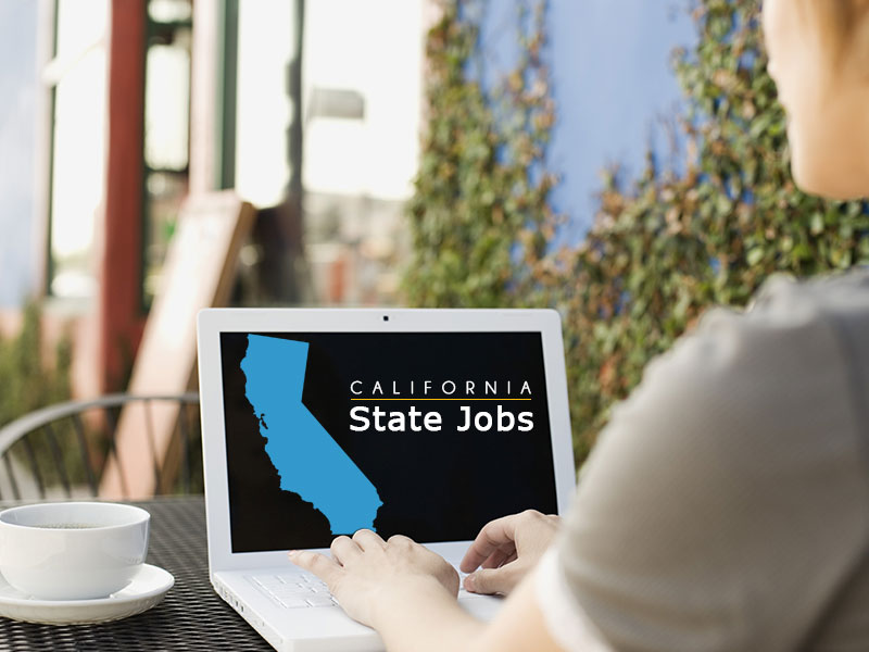 Find a State Job icon